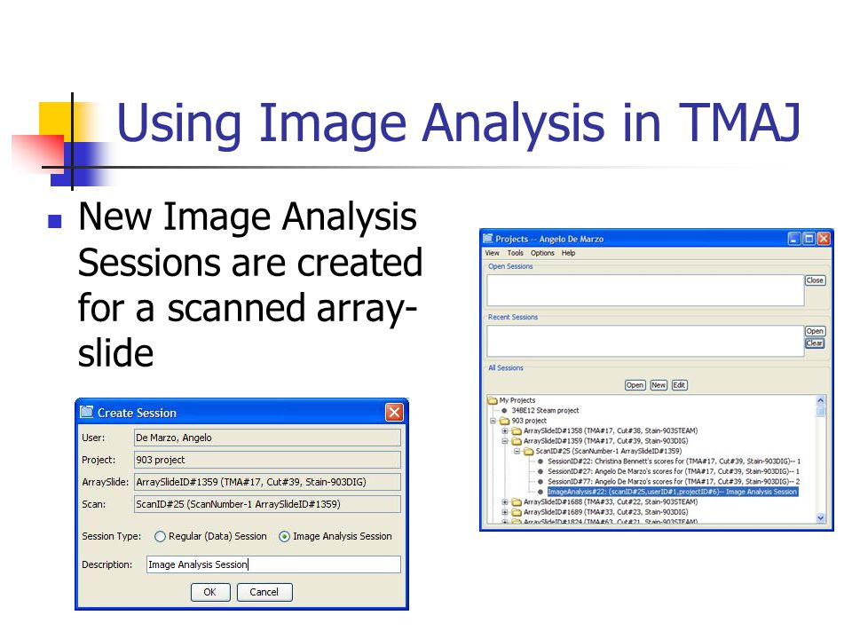 Using Image Analysis in TMAJ New Image Analysis Sessions are created for a scanned array- slide