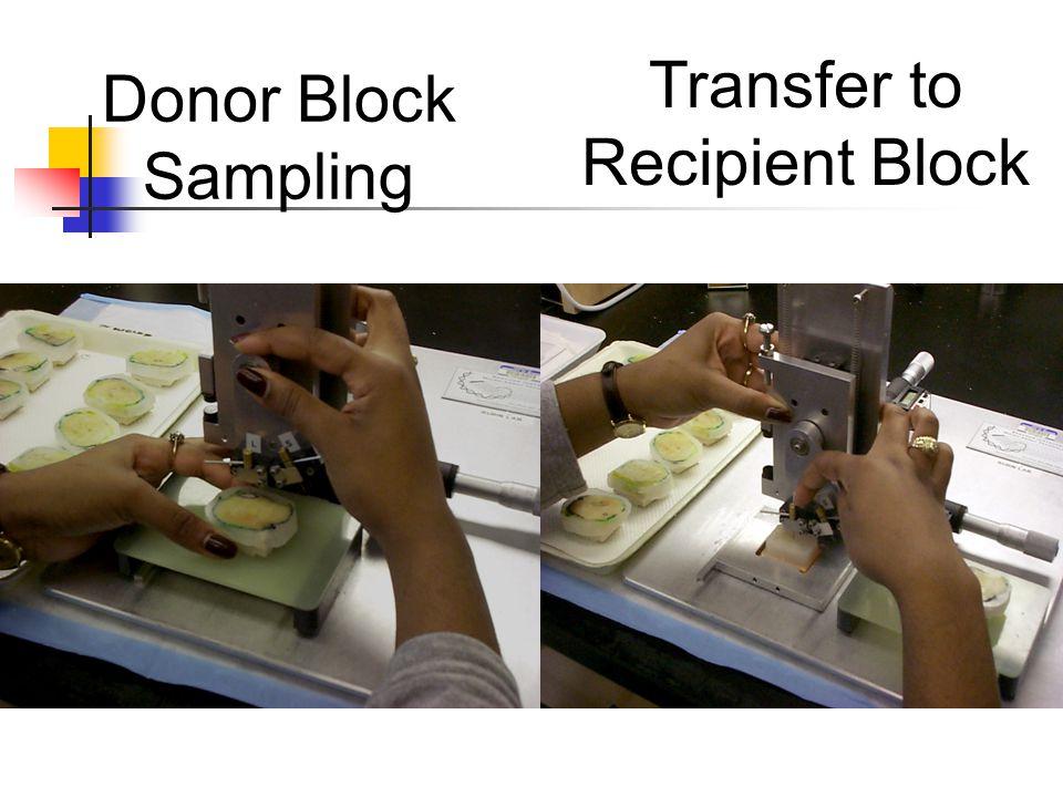 Donor Block Sampling Transfer to Recipient Block