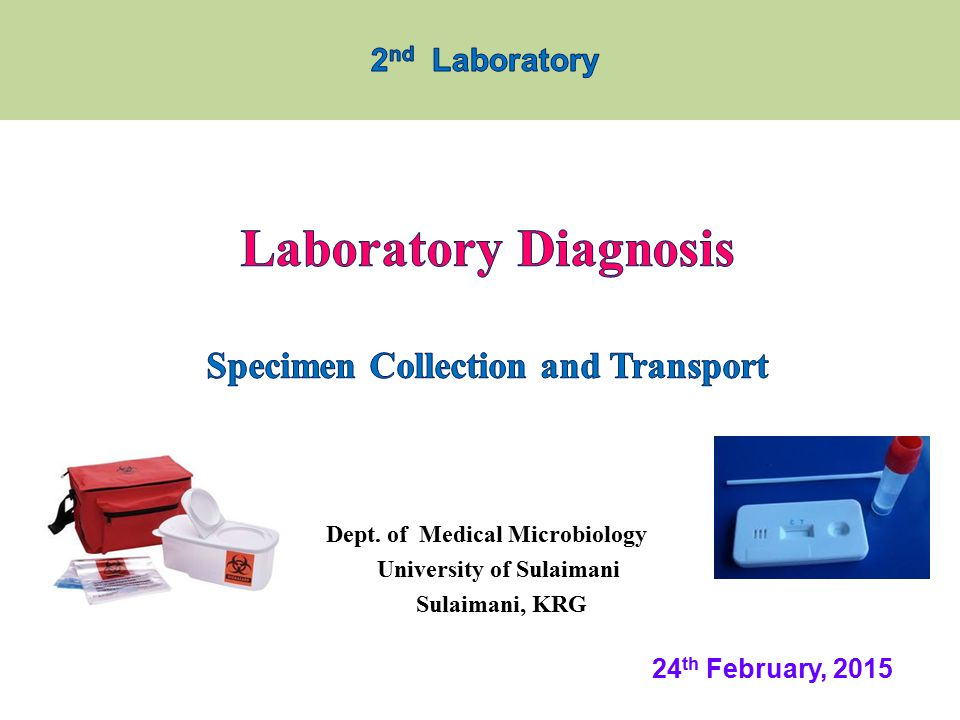 Common types of Specimen Collection  Specimen is taken from the viral lesion by: Swab from the lesion Aspiration from vesicles o Both placed in a(container with VTM)