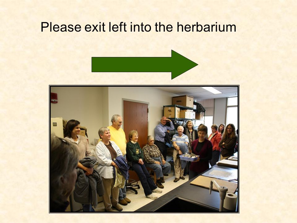 Please exit left into the herbarium