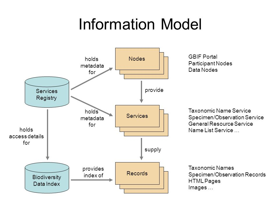 GBIF Network Data Model Provider (Institution) Service (Collection) BindingtModel Specimen/ Observation Taxon Name Index Record General Resource (URL) Services Registry Web Service Implementations Biodiversity Data Index Name List Record Specimen/ Observation Service Taxonomic Name Service General Resource Service Name List Service Electronic Catalogue of Names of Known Organisms Name Usage
