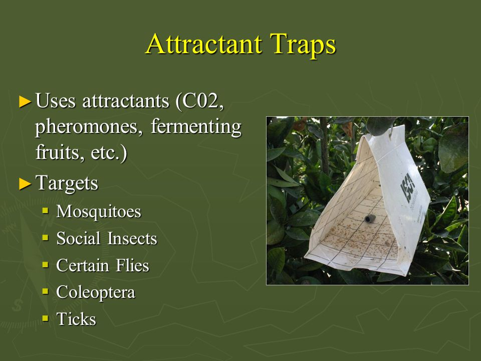 Attractant Traps ► Uses attractants (C02, pheromones, fermenting fruits, etc.) ► Targets  Mosquitoes  Social Insects  Certain Flies  Coleoptera  Ticks