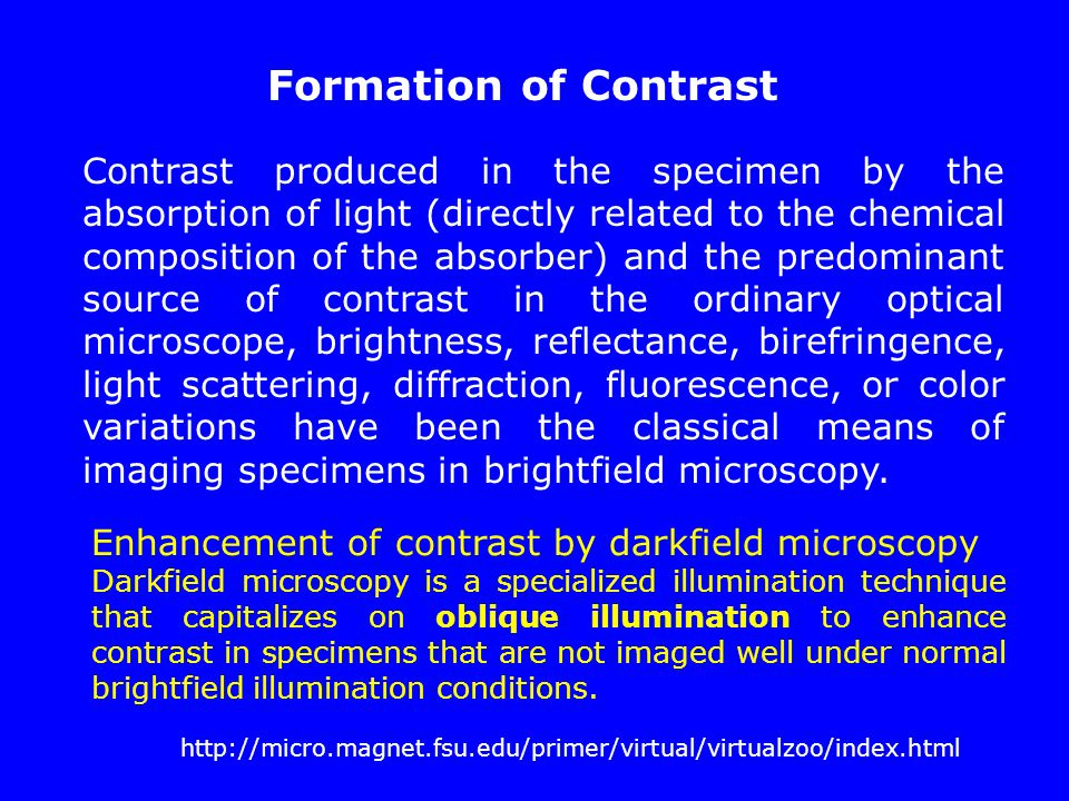 Contrast produced in the specimen by the absorption of light (directly related to the chemical composition of the absorber) and the predominant source
