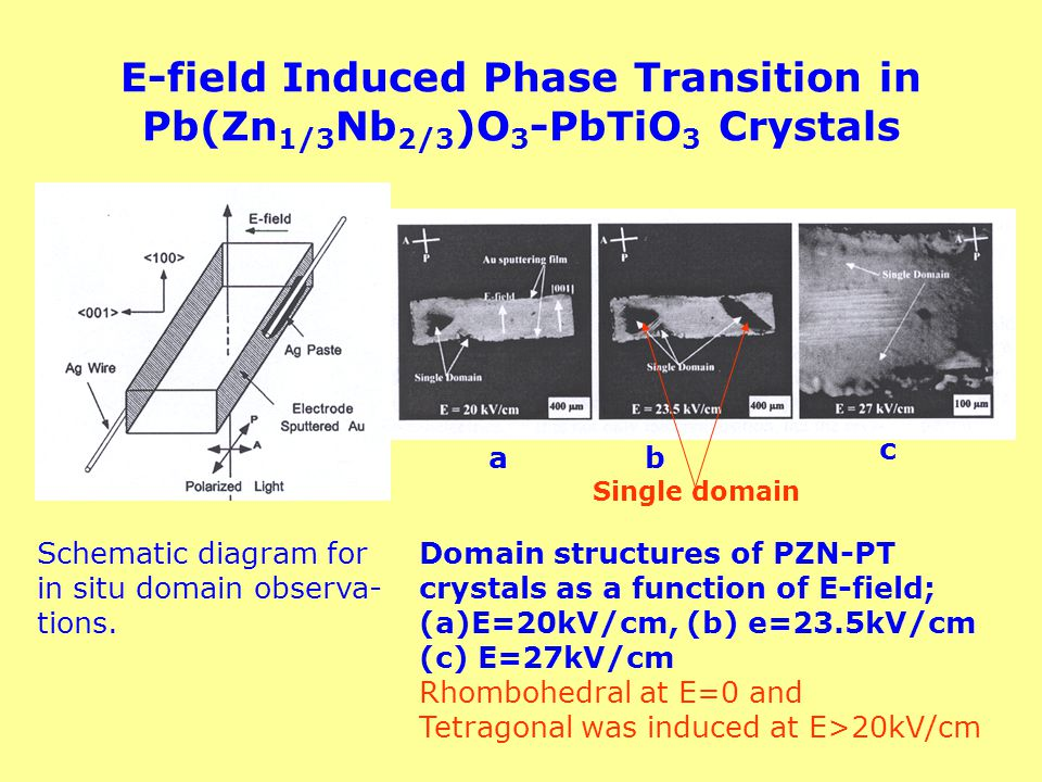 E-field Induced Phase Transition in Pb(Zn 1/3 Nb 2/3 )O 3 -PbTiO 3 Crystals Schematic diagram for in situ domain observa- tions. Domain structures of
