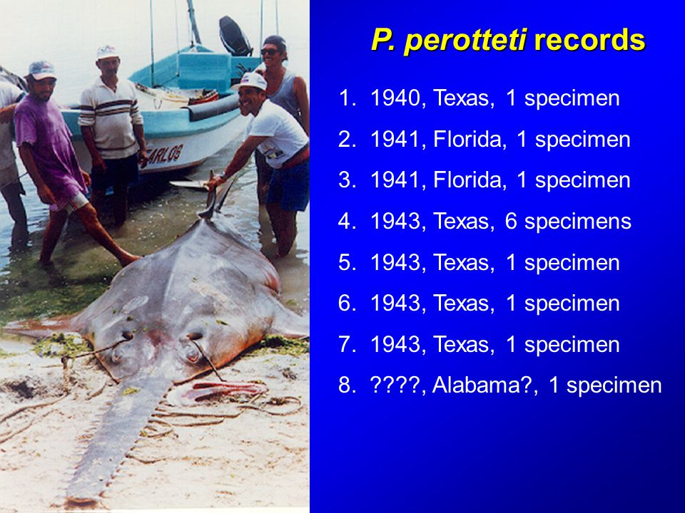 P. perotteti records 1. 1940, Texas, 1 specimen 2.
