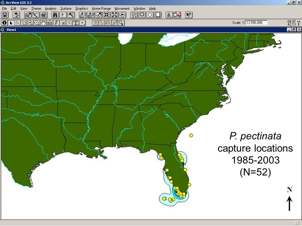 P. pectinata capture locations 1985-2003 (N=52) N