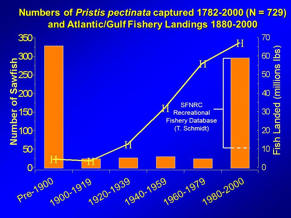 Numbers of Pristis pectinata captured 1782-2000 (N = 729) and Atlantic/Gulf Fishery Landings 1880-2000 Pre-1900 1900-1919 1920-19391940-19591960-1979 1980-2000 SFNRC Recreational Fishery Database (T.