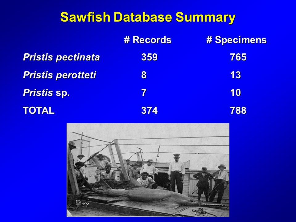 Sawfish Database Summary Pristis pectinata359765 Pristis perotteti813 Pristis sp.710 TOTAL374788 # Records # Specimens