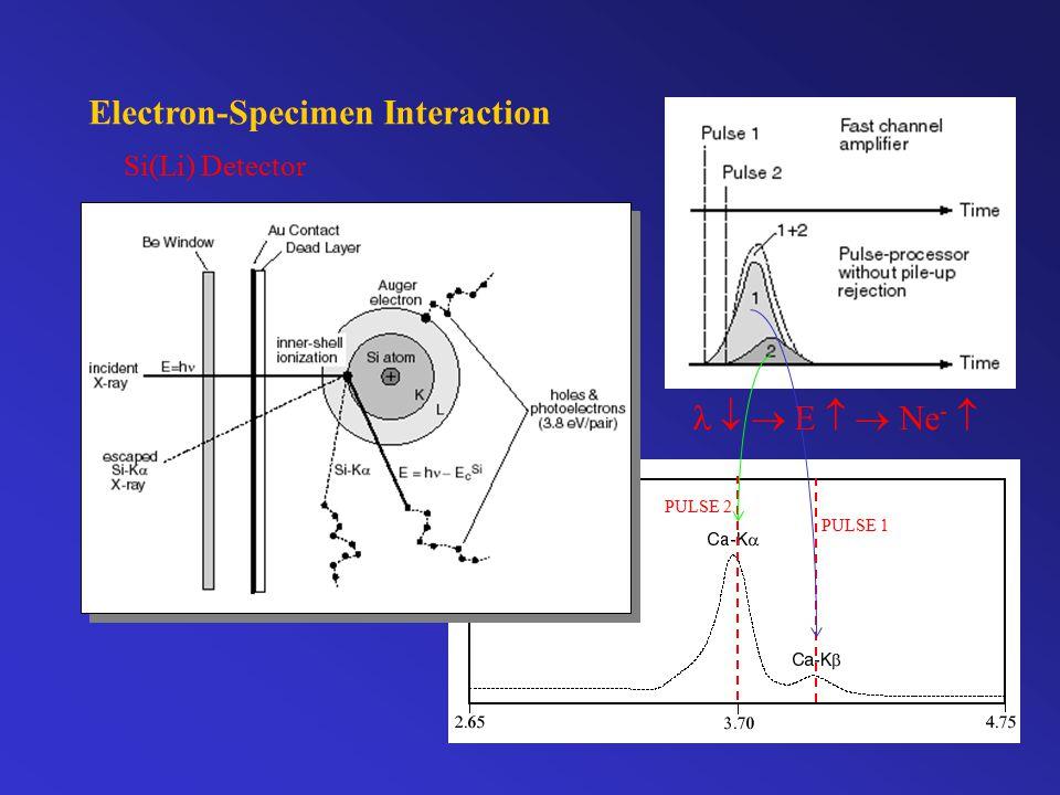 Electron-Specimen Interaction Si(Li) Detector   E   Ne -  PULSE 1 PULSE 2