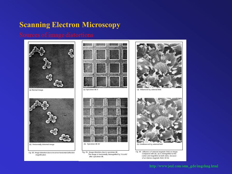 Scanning Electron Microscopy Sources of image distortions http://www.jeol.com/sem_gde/imgchng.html