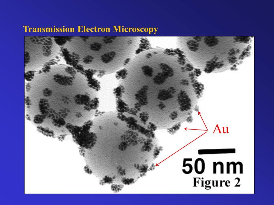 Transmission Electron Microscopy Au
