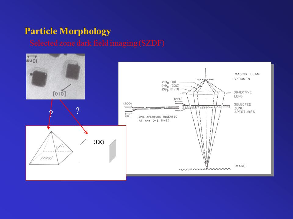 Particle Morphology Selected zone dark field imaging (SZDF) ? ?