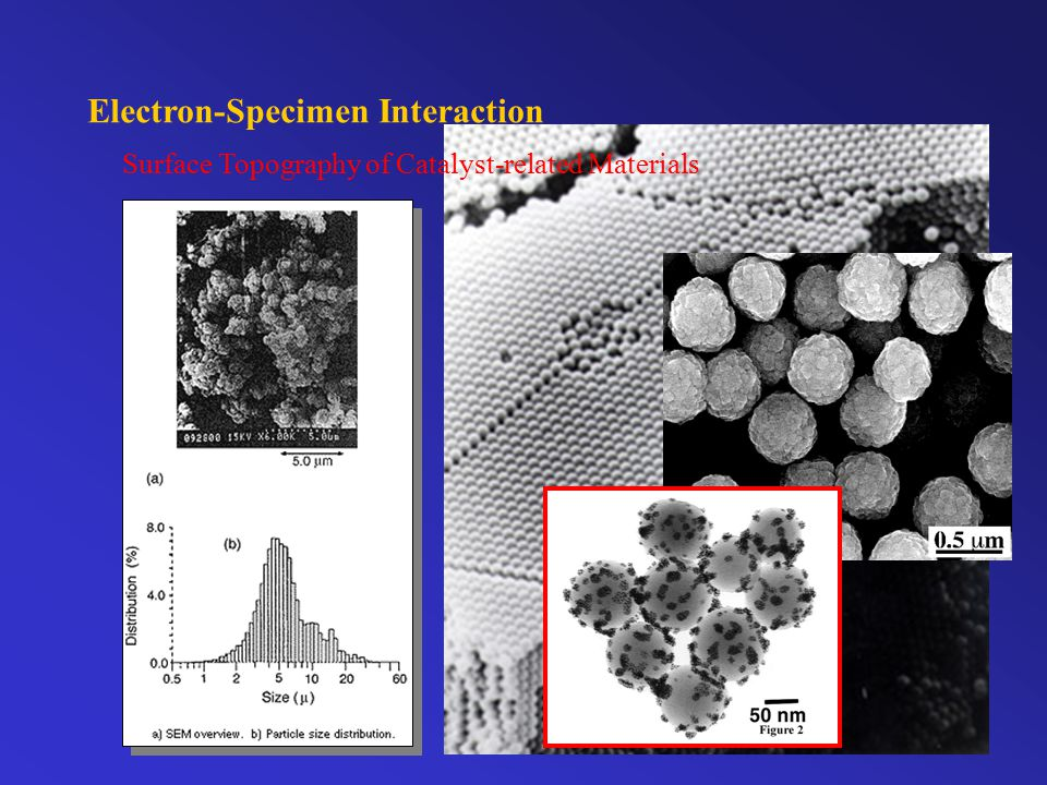 Electron-Specimen Interaction Surface Topography of Catalyst-related Materials