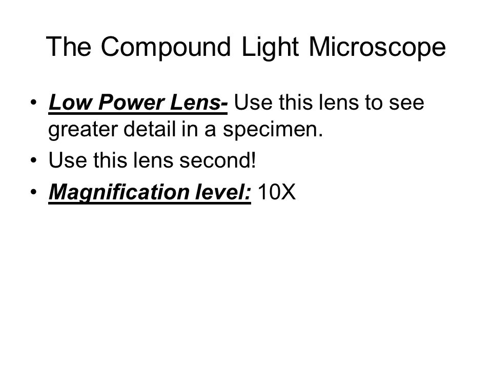 The Compound Light Microscope Low Power Lens- Use this lens to see greater detail in a specimen.