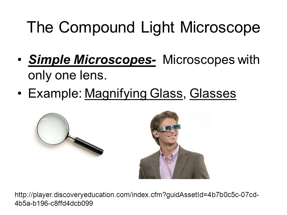 The Compound Light Microscope Simple Microscopes- Microscopes with only one lens. Example: Magnifying Glass, Glasses http://player.discoveryeducation.