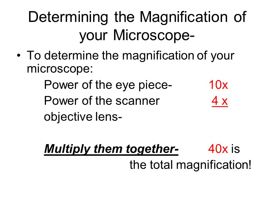 Determining the Magnification of your Microscope- To determine the magnification of your microscope: Power of the eye piece- 10x Power of the scanner 4 x objective lens- Multiply them together-40x is the total magnification!