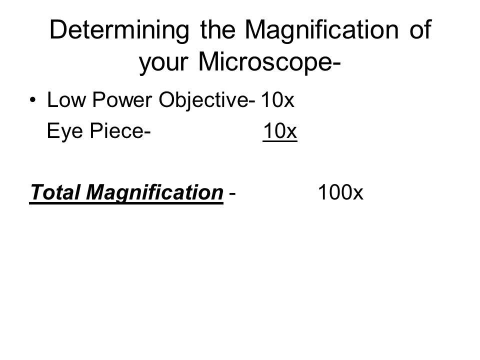Determining the Magnification of your Microscope- Low Power Objective- 10x Eye Piece- 10x Total Magnification -100x