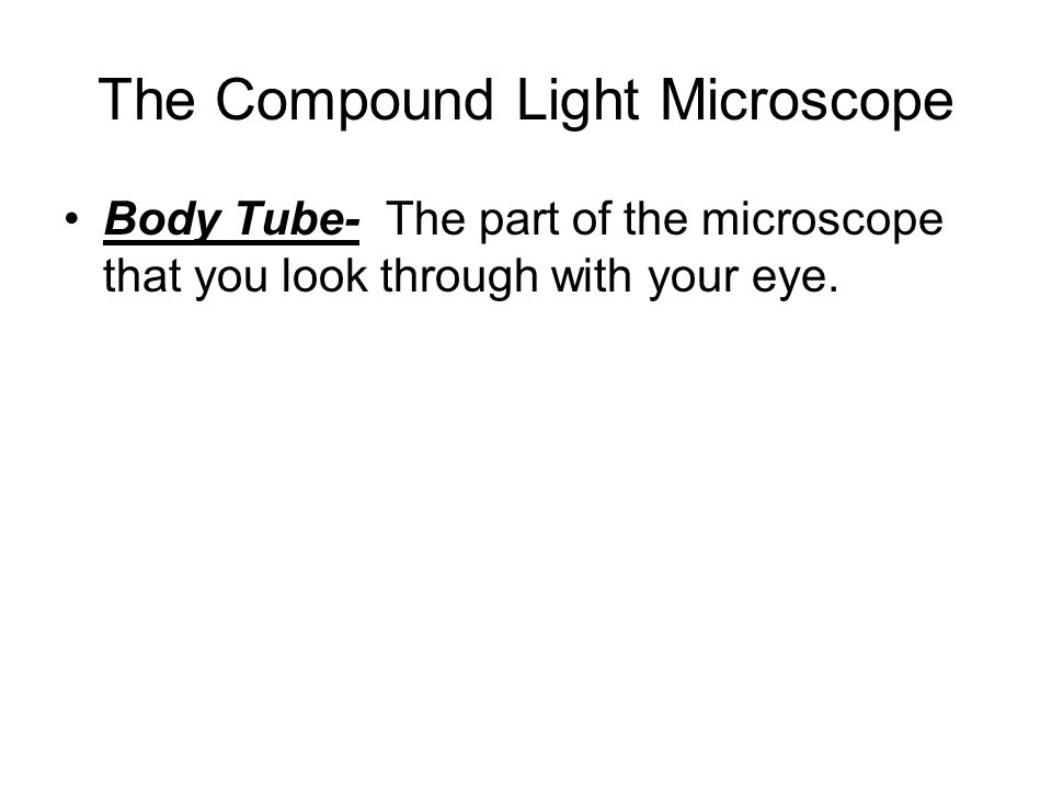 The Compound Light Microscope Body Tube- The part of the microscope that you look through with your eye.
