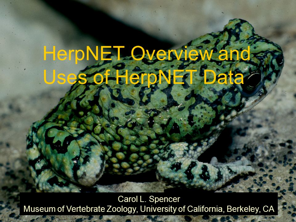 HerpNET Overview and Uses of HerpNET Data Carol L.