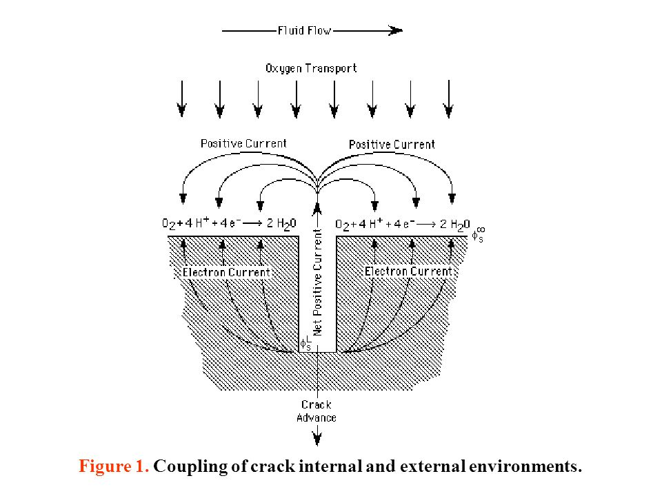 Figure 1. Coupling of crack internal and external environments.