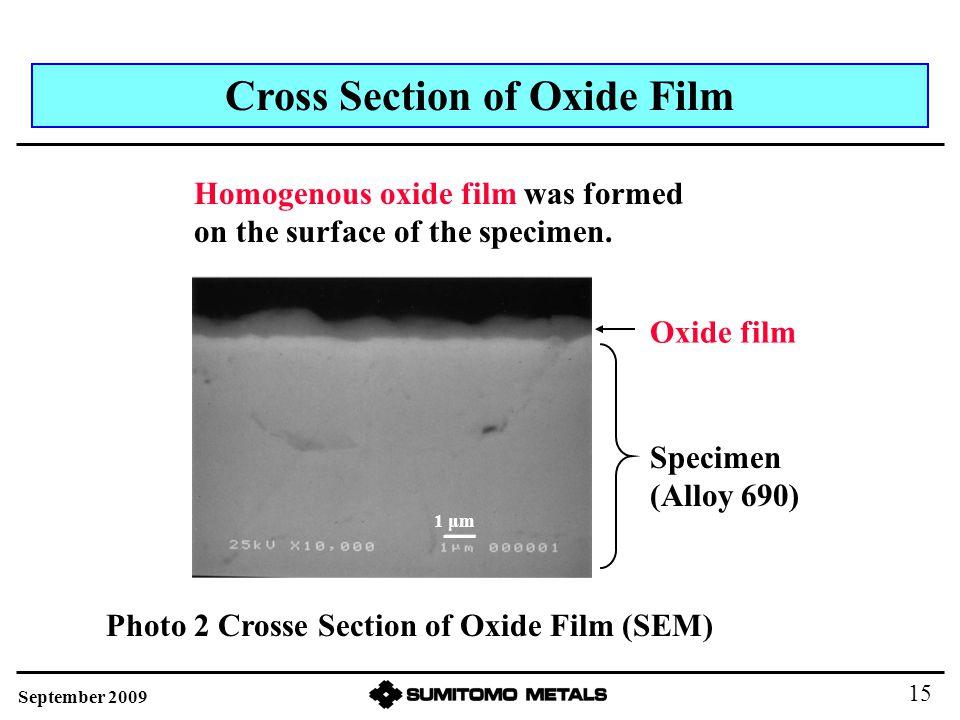 Cross Section of Oxide Film Oxide film Homogenous oxide film was formed on the surface of the specimen.