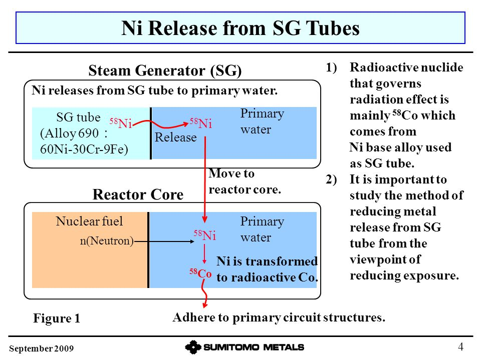 Ni Release from SG Tubes Reactor Core 58 Ni 58 Co Ni releases from SG tube to primary water. 58 Ni Primary water Steam Generator (SG) (Alloy 690 : 60N