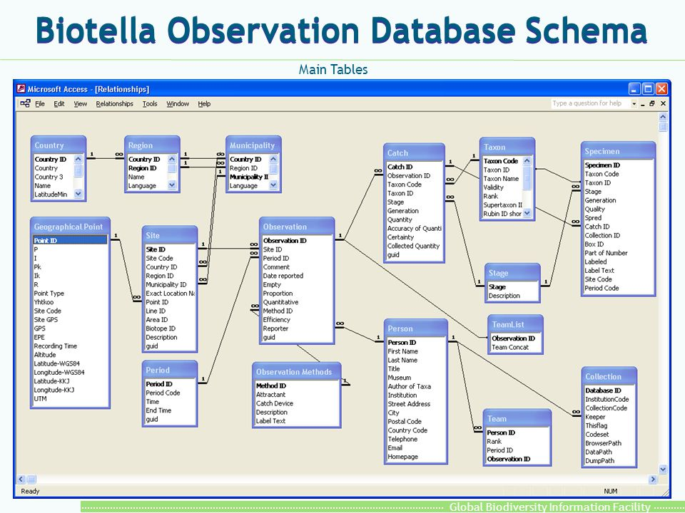 Global Biodiversity Information Facility Biotella Observation Database Schema Main Tables