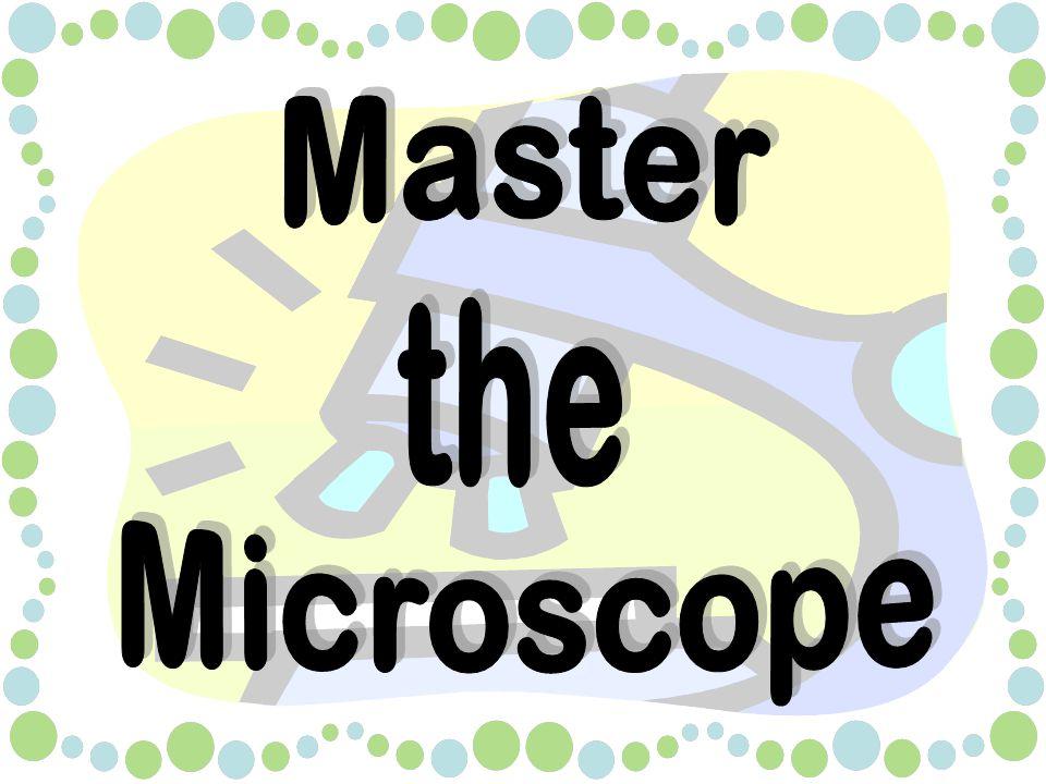 Summary Slide Standards –ScienceScience –MathMath Can you master the microscope.