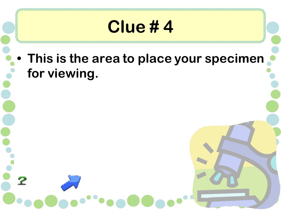 Clue # 4 This is the area to place your specimen for viewing.