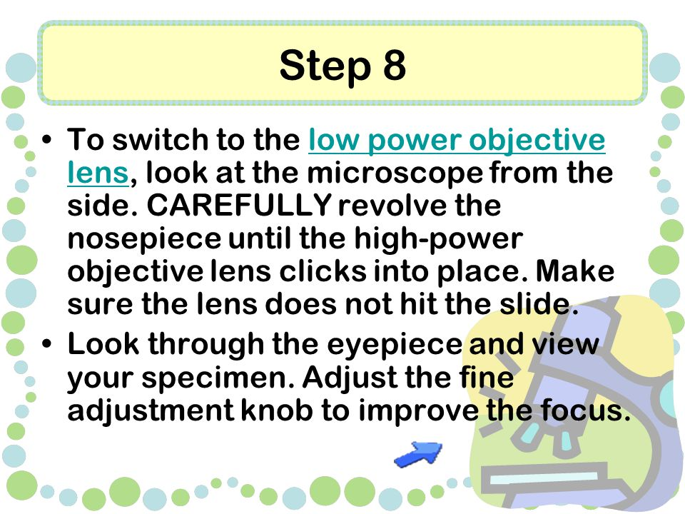 Step 8 To switch to the low power objective lens, look at the microscope from the side.