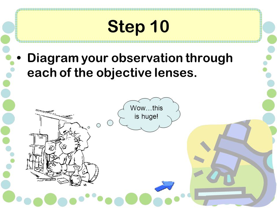 Step 10 Diagram your observation through each of the objective lenses. Wow…this is huge!