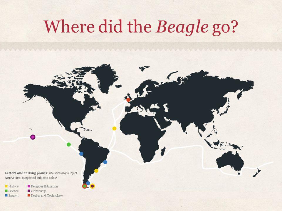 Where did the Beagle go