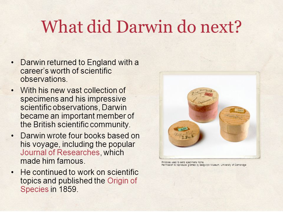 What did Darwin do next? Darwin returned to England with a career's worth of scientific observations. With his new vast collection of specimens and hi