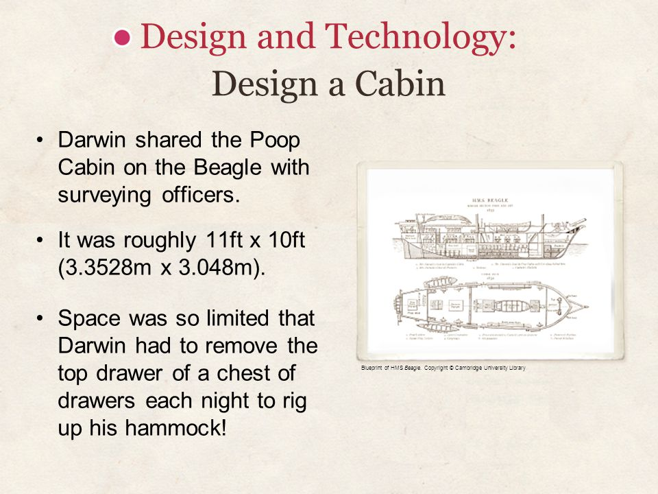 Design and Technology: Design a Cabin Darwin shared the Poop Cabin on the Beagle with surveying officers. It was roughly 11ft x 10ft (3.3528m x 3.048m
