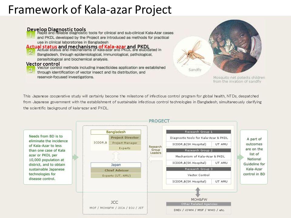 Framework of Kala-azar Project Develop Diagnostic tools Actual status and mechanisms of Kala-azar and PKDL Vector control