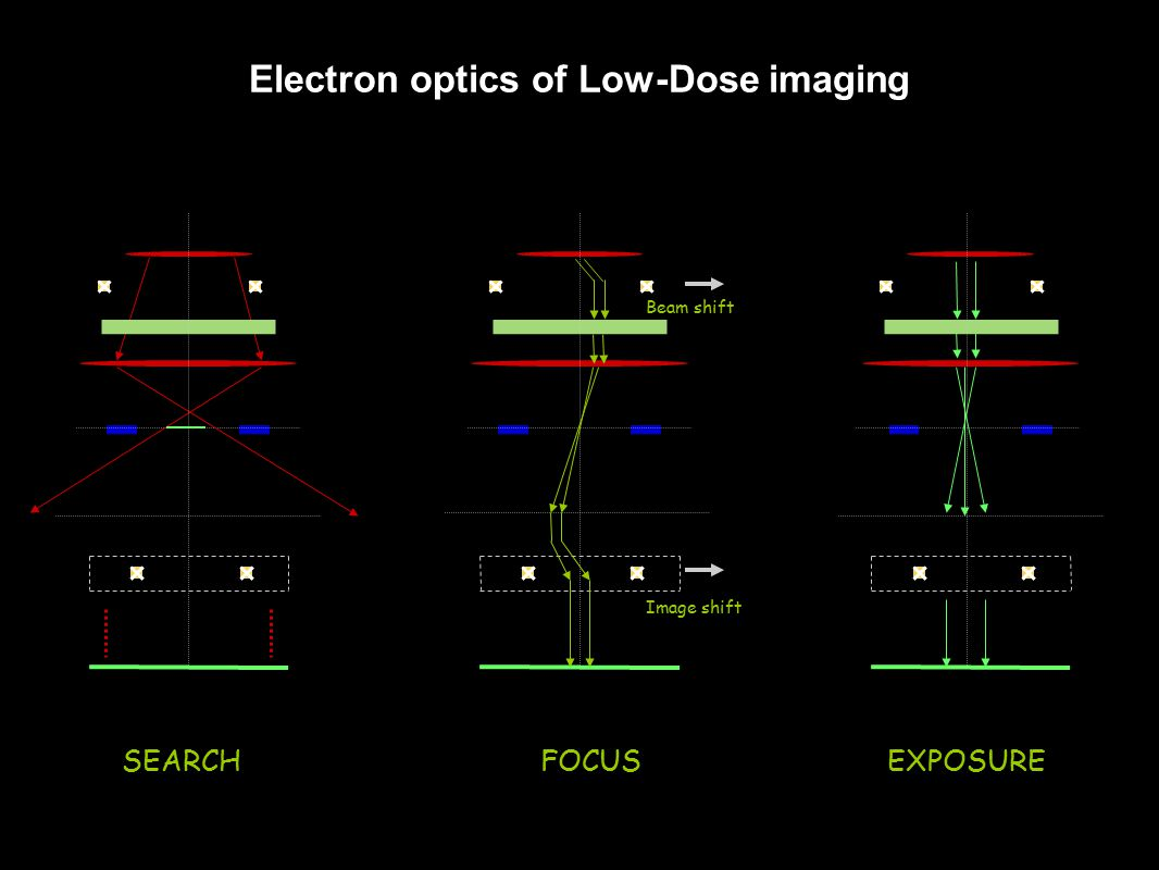 SEARCH Beam shift Image shift FOCUSEXPOSURE Electron optics of Low-Dose imaging