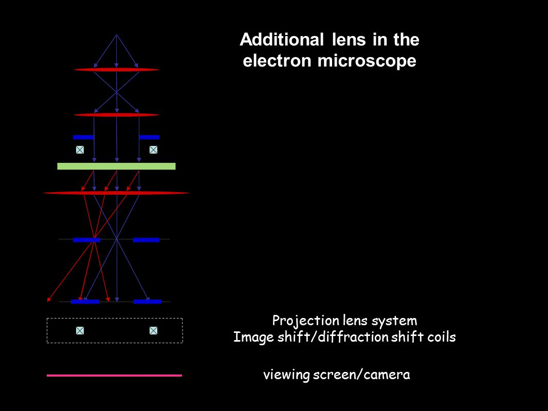 Projection lens system Image shift/diffraction shift coils viewing screen/camera Additional lens in the electron microscope