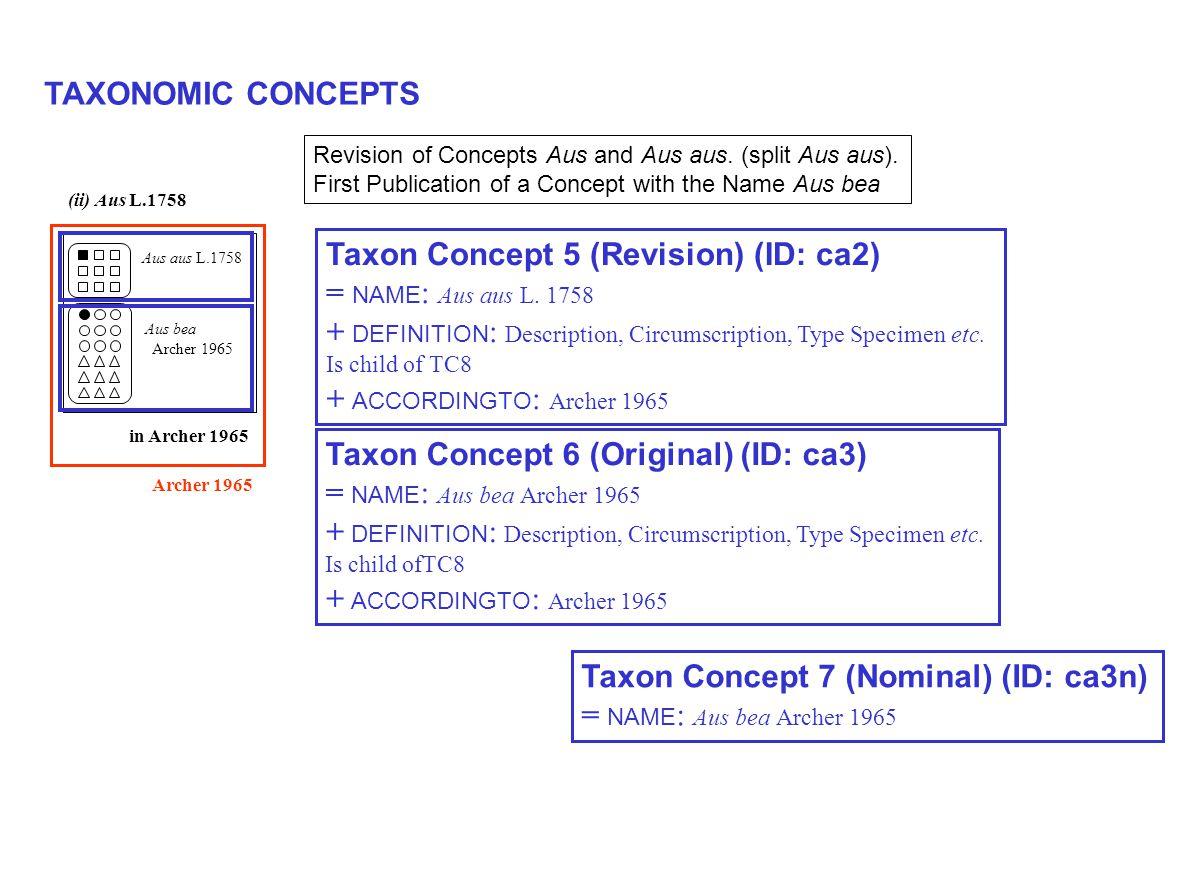 TAXONOMIC CONCEPTS Archer 1965 Aus aus L.1758 (ii) Aus L.1758 Aus bea Archer 1965 in Archer 1965 Taxon Concept 5 (Revision) (ID: ca2) = NAME : Aus aus L.