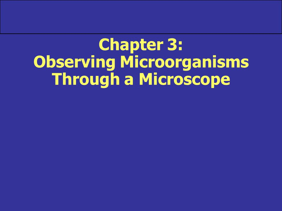 Units of Measurement Appendix D, Exponential Notation section Microorganisms