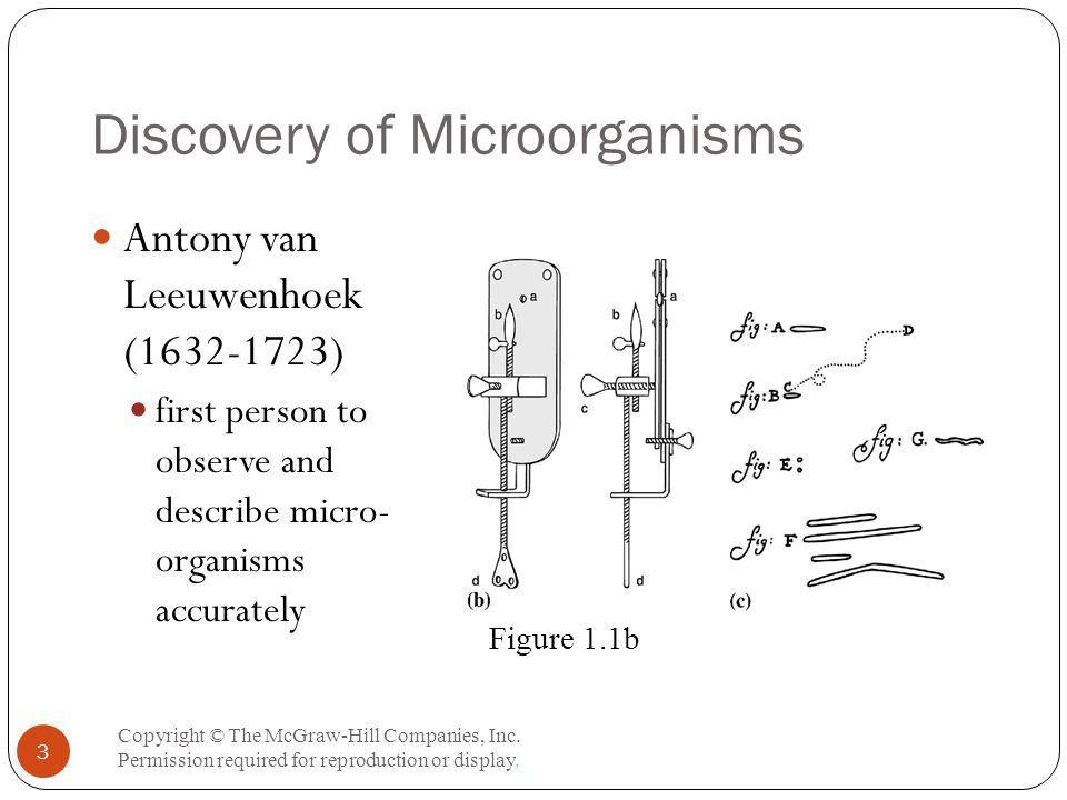 The Bright-Field Microscope Copyright © The McGraw-Hill Companies, Inc.