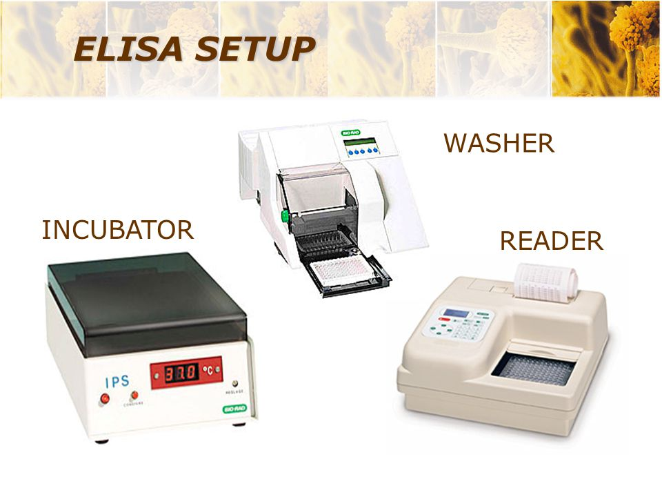 ELISA SETUP WASHER INCUBATOR READER