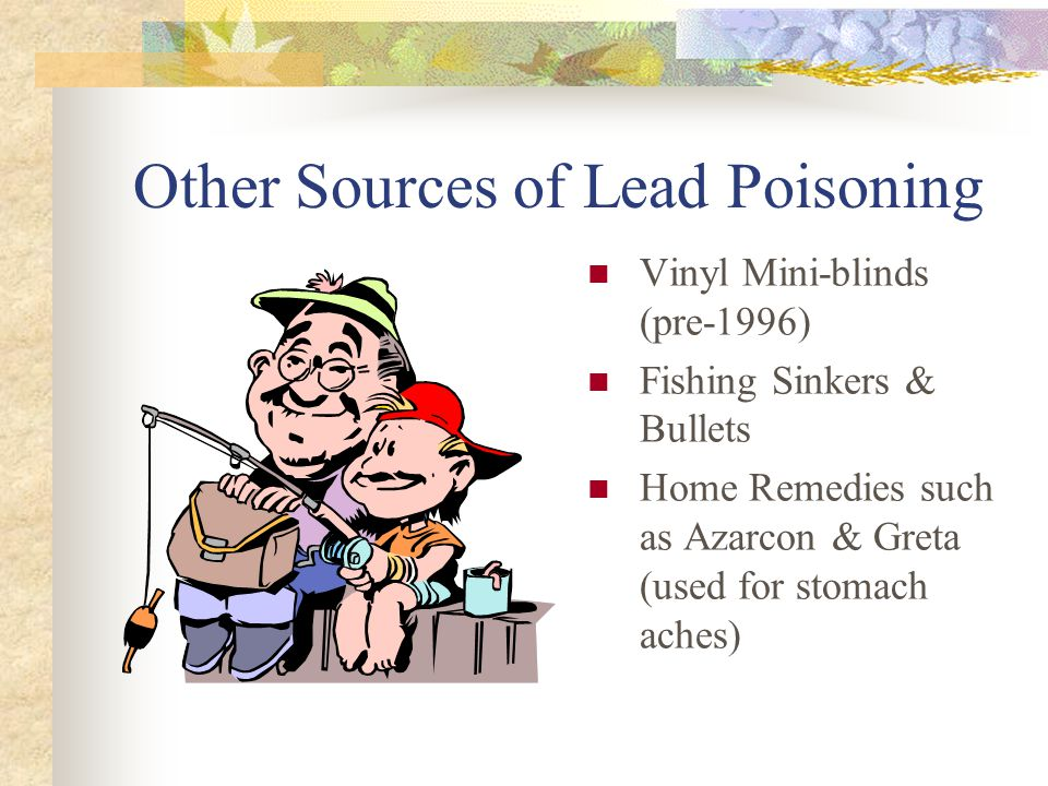 Other Sources of Lead Poisoning Vinyl Mini-blinds (pre-1996) Fishing Sinkers & Bullets Home Remedies such as Azarcon & Greta (used for stomach aches)