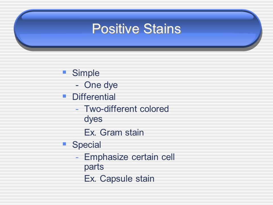 Positive and Negative Stains  Positive stains are basic dyes (cationic) that bind to negatively charged cells.  Negative stains are acidic dyes (ani