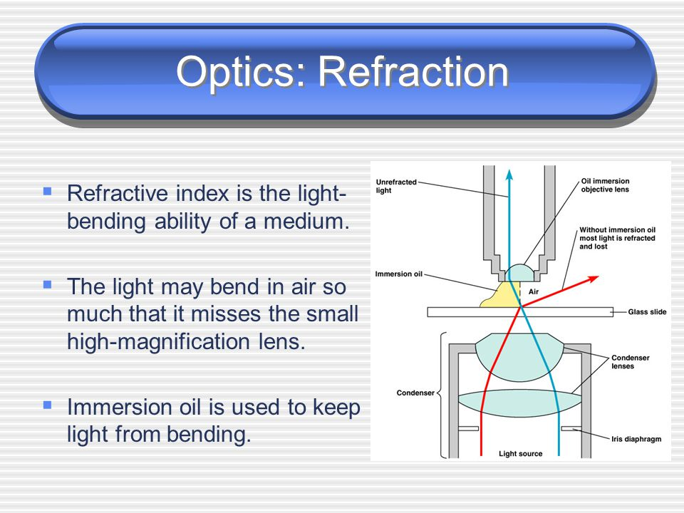 Optics: Resolution  Resolution can be increased by using immersion oil and shorter wavelengths of light.