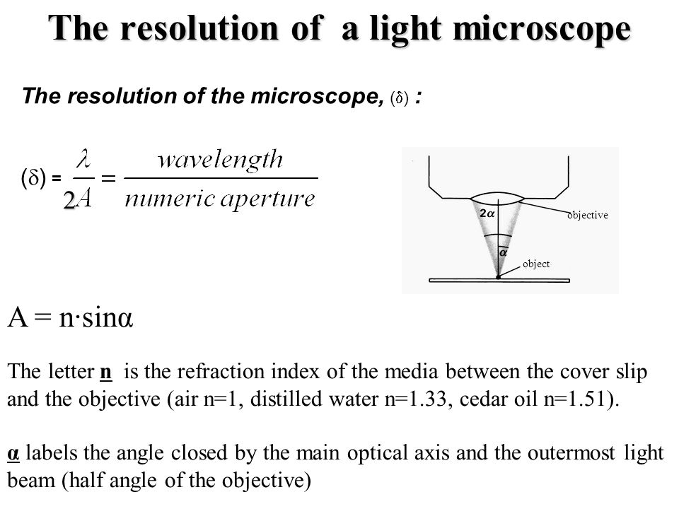 The resolution of the microscope, (  ) : (  ) = The resolution of a light microscope objective object A = n·sinα The letter n is the refraction index of the media between the cover slip and the objective (air n=1, distilled water n=1.33, cedar oil n=1.51).