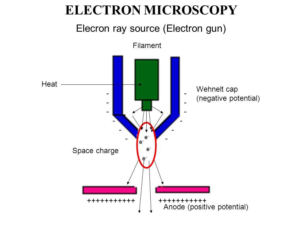 Elecron ray source (Electron gun) Filament Wehnelt cap (negative potential) Anode (positive potential) Heat +++++++++++ - Space charge e-e- e-e- e-e- e-e- ELECTRON MICROSCOPY