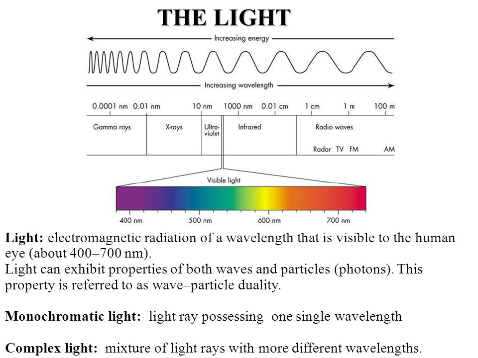 Light: electromagnetic radiation of a wavelength that is visible to the human eye (about 400–700 nm).