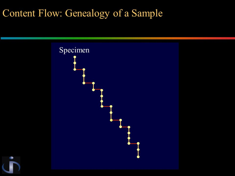 Specimen Content Flow: Genealogy of a Sample