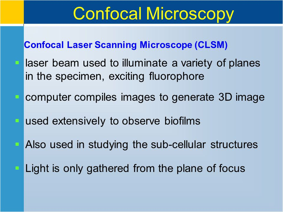 Confocal Microscopy Confocal Laser Scanning Microscope (CLSM)  laser beam used to illuminate a variety of planes in the specimen, exciting fluorophore  computer compiles images to generate 3D image  used extensively to observe biofilms  Also used in studying the sub-cellular structures  Light is only gathered from the plane of focus