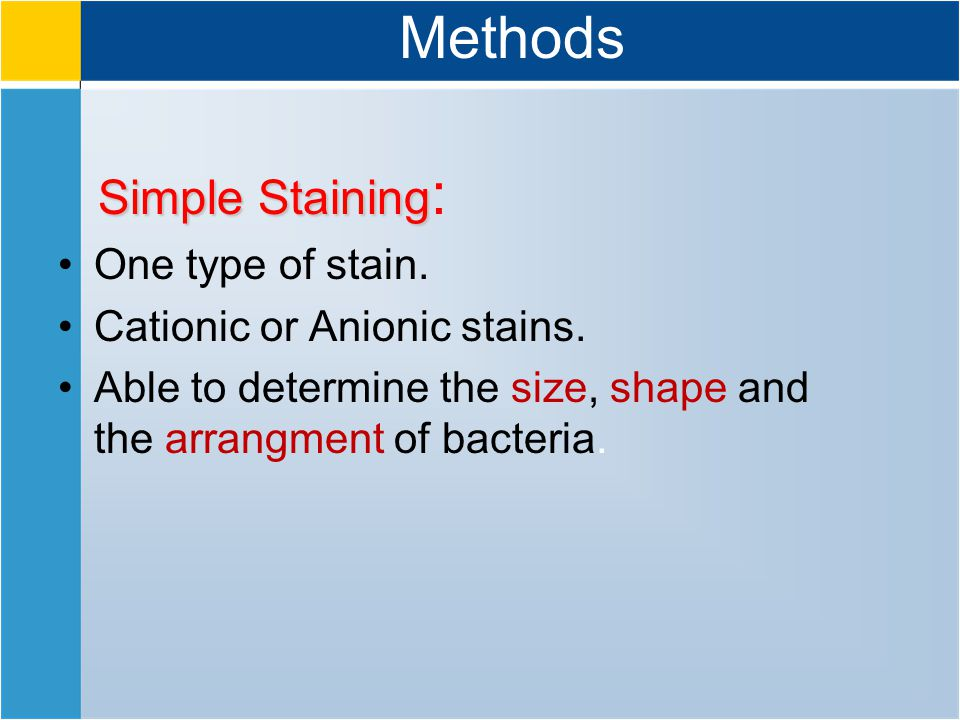 Methods Simple Staining Simple Staining : One type of stain.